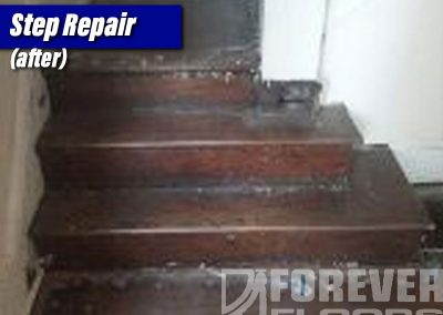 Step Repair (before)