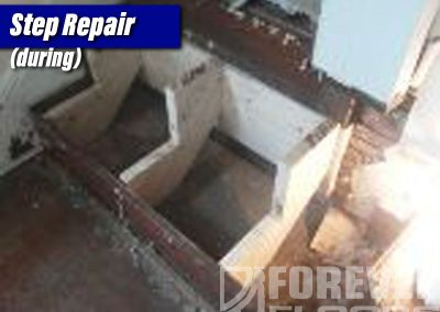 Step-Repair-During